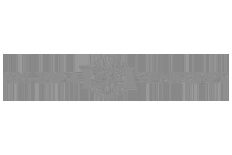 Big Idea Ventures